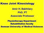 knee joint kinesiology