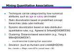 mining quantitative associations