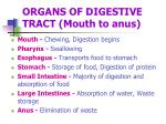 organs of digestive tract mouth to anus