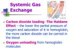 systemic gas exchange