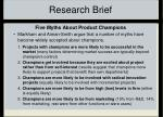 research brief