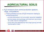 agricultural soils83
