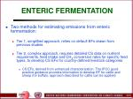 enteric fermentation56