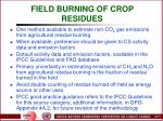 field burning of crop residues