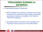 prescribed burning of savannas