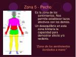 zona 5 pecho