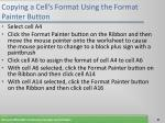 copying a cell s format using the format painter button