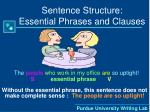 sentence structure essential phrases and clauses14