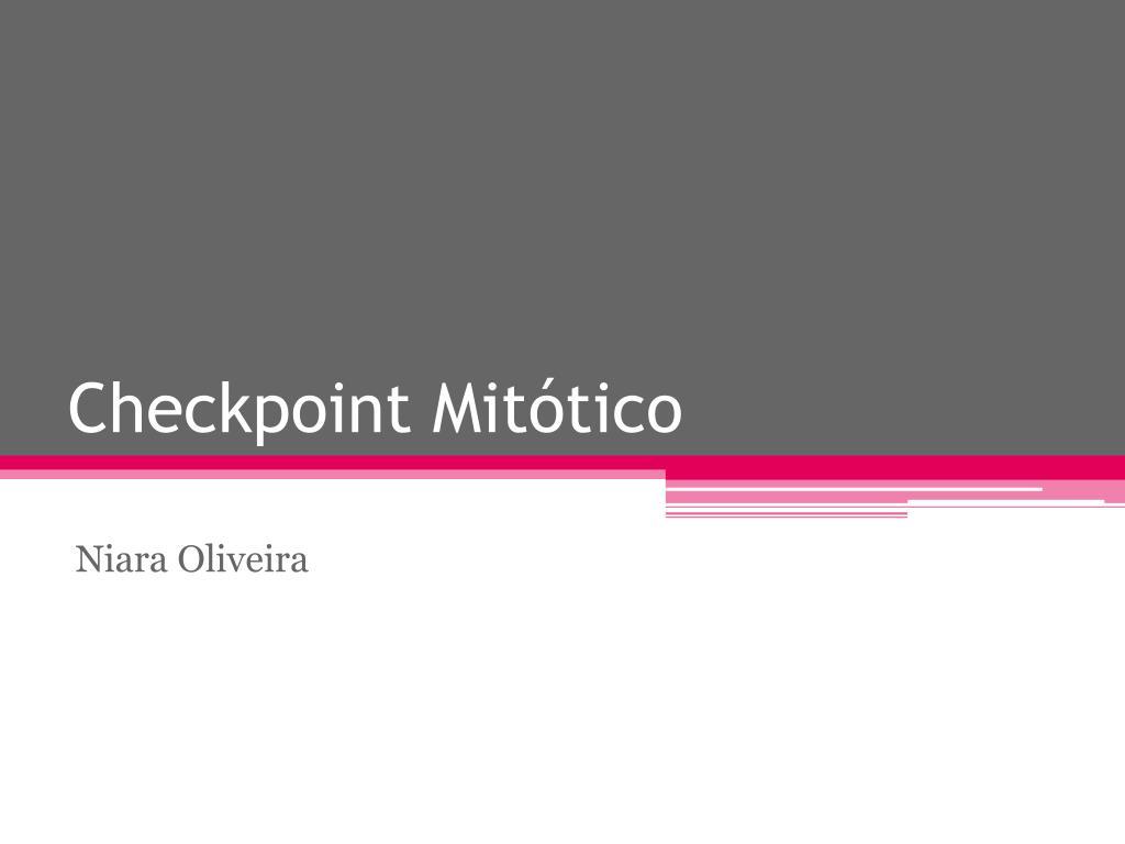 checkpoint mit tico l.