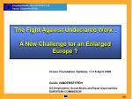 the fight against undeclared work a new challenge for an enlarged europe