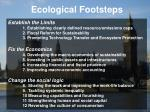 ecological footsteps15