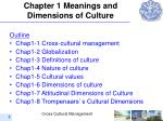 c hapter 1 meanings and dimensions of culture