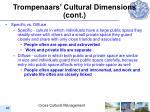 trompenaars cultural dimensions cont46