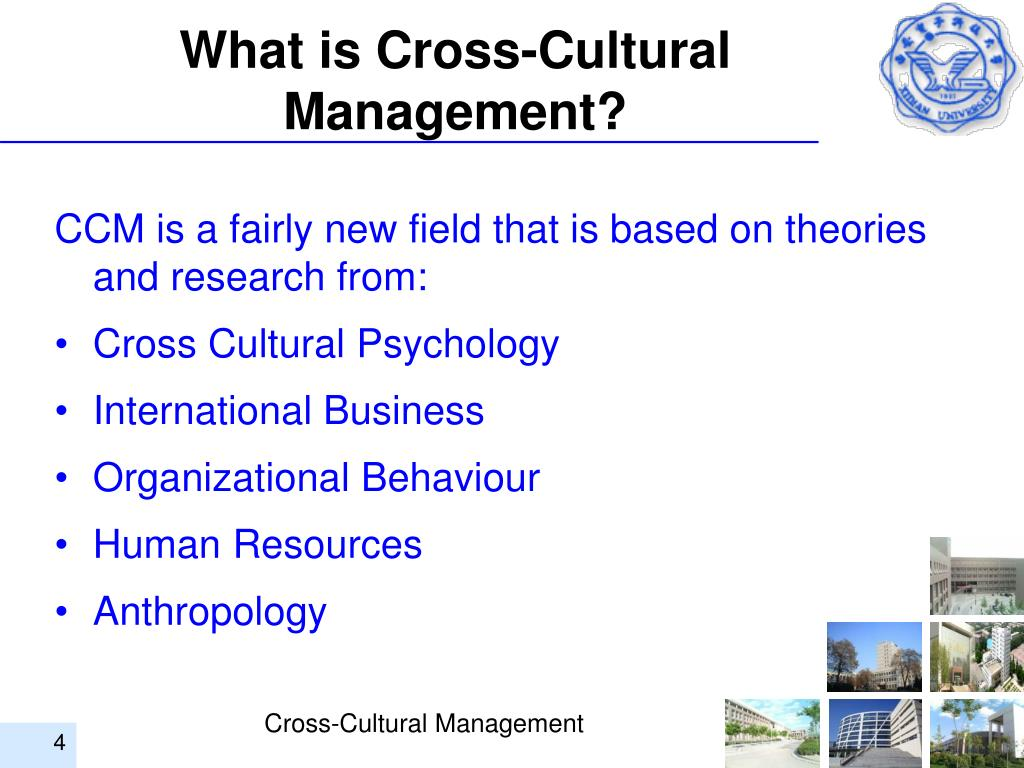What is Cross-Cultural Management?