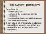 the system perspective