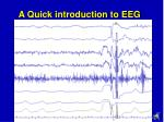 a quick introduction to eeg