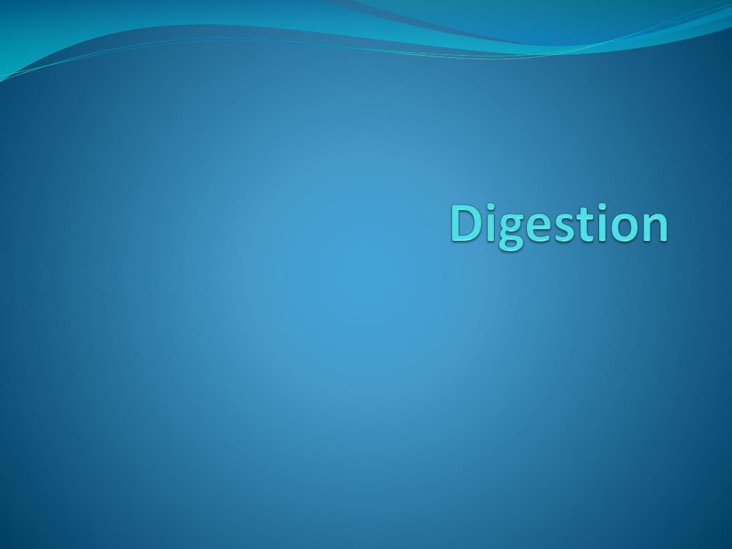 digestion l.