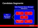 candidate segments
