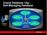 oracle database 10 g self managing database