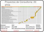 proyectos de consultor a 20 a os