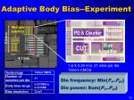 adaptive body bias experiment