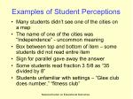 examples of student perceptions