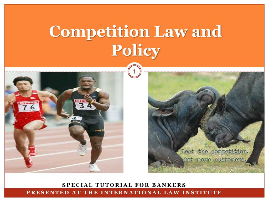 competition law and policy l.