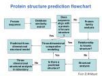 protein structure prediction flowchart