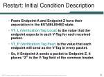 restart initial condition description