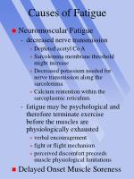 causes of fatigue24