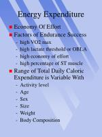 energy expenditure22