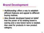 brand development39