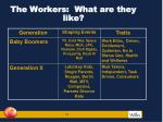 the workers what are they like