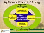 key elements pillars of hs strategy