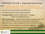 strategy pillar 1 expected outcomes