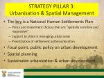 strategy pillar 3 urbanisation spatial management