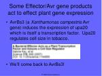 some effector avr gene products act to effect plant gene expression