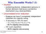 why ensemble works 1