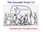 why ensemble works 2