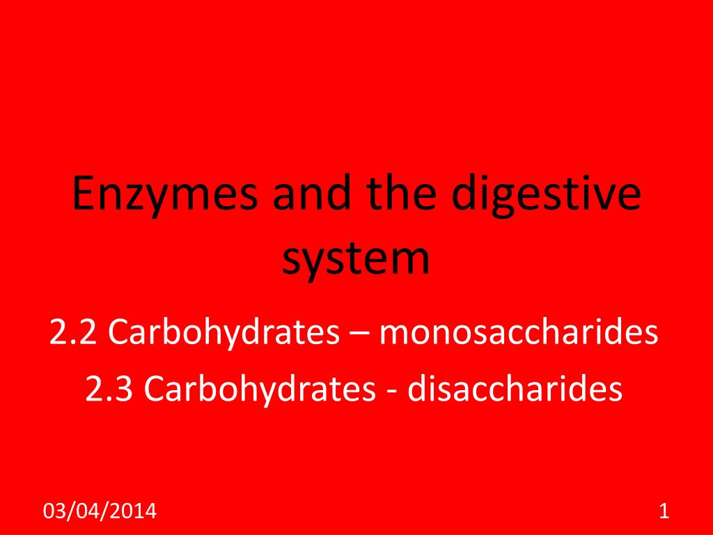 enzymes and the digestive system l.