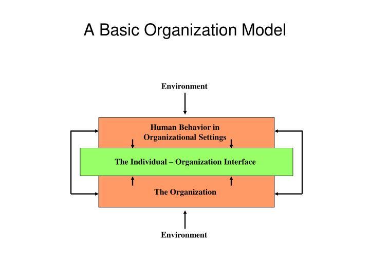 A basic organization model