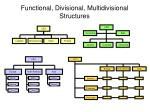 functional divisional multidivisional structures