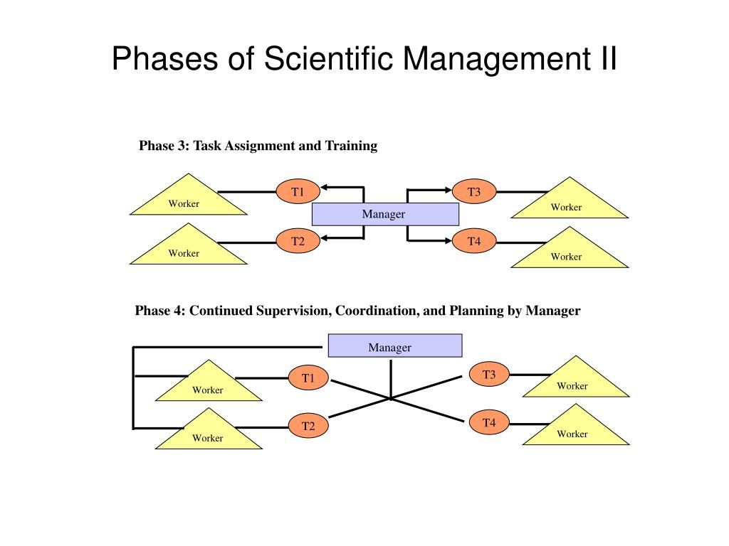 Phase 3: Task Assignment and Training