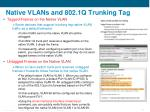 native vlans and 802 1q trunking tag