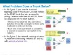 what problem does a trunk solve