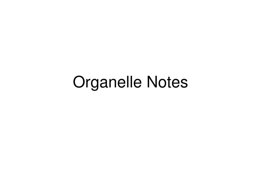 organelle notes l.