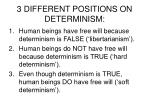 3 different positions on determinism