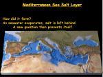 mediterranean sea salt layer9