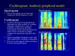 cochleogram auditory peripheral model