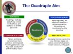 the quadruple aim